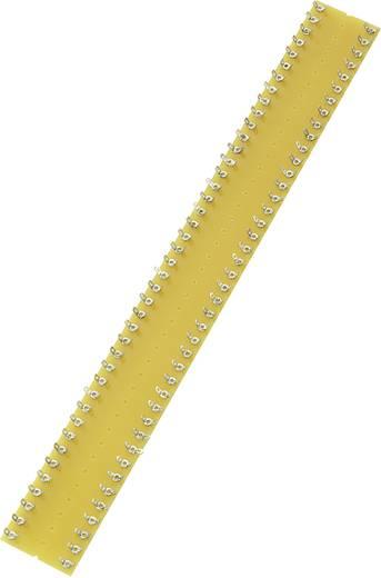Forrfül léc kétsoros kétsoros Pólusszám 42 (H x Sz x Ma) 335 x 38 x 1.6 mm Pecektávolság 8 mm