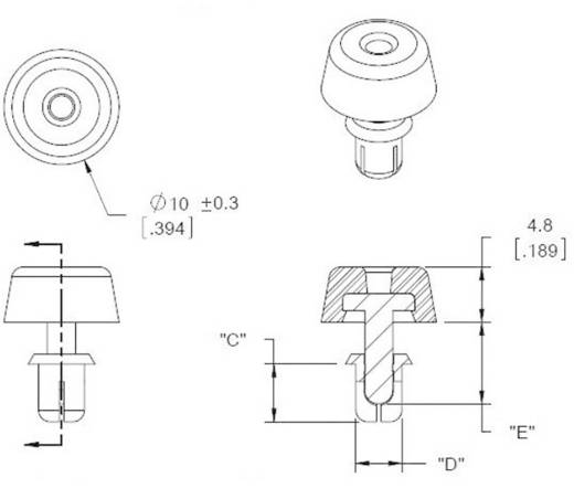 Richco Műszerdoboz láb terpesztő rögzítéssel, FSR FSR-3 (C x D x E) 5 x 4 x 7.1 mm Poliamid Fekete