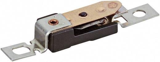 Hőmérséklet figyelő és szabályozó A10V