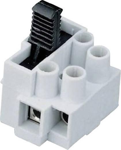 Sorkapocs biztosítékkal, 2 pólus, 2,5 mm², Adels-Contact 170302V9