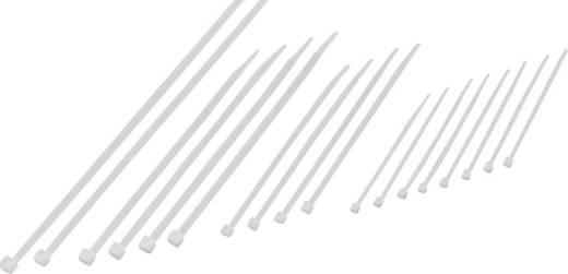 Kábelkötegelő készlet, 100/150/200/250 x 2,5 mm, natúr, 200 db, Conrad Components 541665