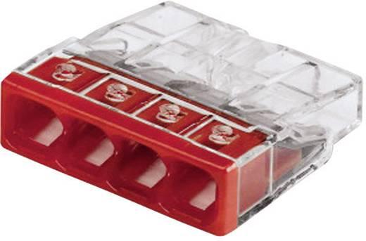 Sorkapocs merev: 0.5-2.5 mm² pólusszám: 4, átlátszó/piros, WAGO 2273-204/0996-0025/VE00-100 20 db