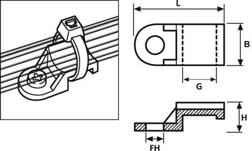 Rögzítő aljzat, csavarozható, CTAM, MB, TY TY3F1-N66-NA-M1, natúr HellermannTyton, tartalom: 1 db