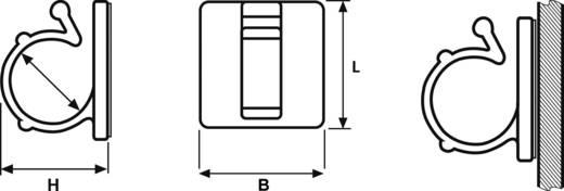 HellermannTyton kábelrögzítő, natúr, RB RB3-N66-NA-C1