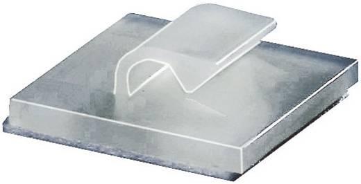 HellermannTyton kábelrögzítő, natúr, RB RB5-N66-NA-C1