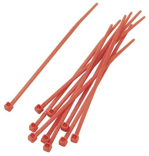 Kábelkötöző készlet, színes (H x Sz) 100 mm x 2.2 mm PBR-100-4RD Szín: Piros 100 db KSS