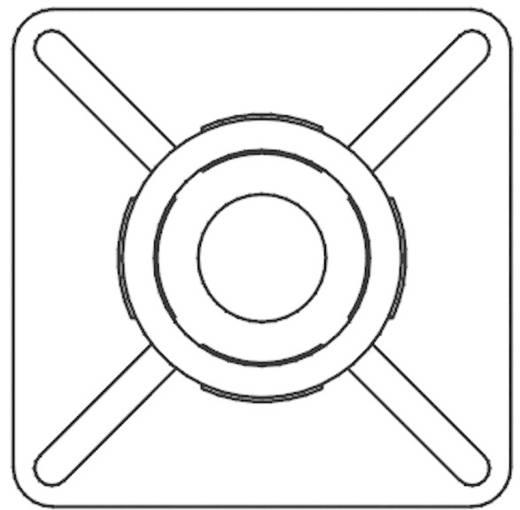 KSS öntapadós rögzítő kábelkötözőhöz, fekete, HCR19R