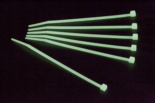 Foszforeszkáló kábelkötegelő készlet, 200 x 2,5 mm, zöld, 100 db, Conrad Components 546645
