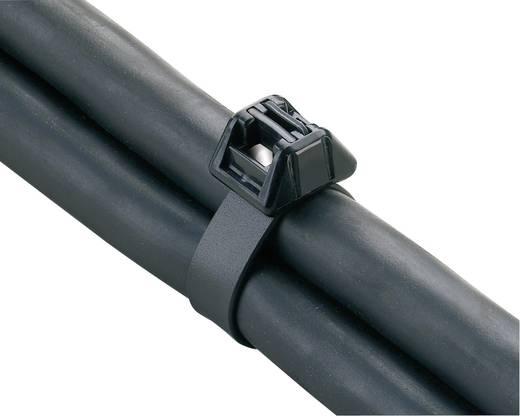 Duplafejű kábelkötegelő 686 x 13 mm, fekete, 1 db, Panduit BSTC-152