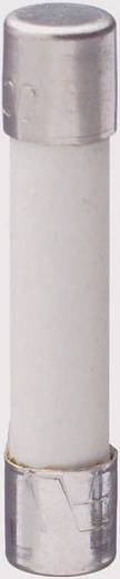 Üvegcsöves biztosíték (Ø x H) 6.4 mm x 31.8 mm 15 A 250 V Szupergyors -FF- ESKA SICHERUNG GBB 15 A Tartalom 1 db