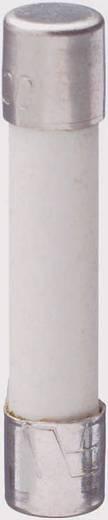 Üvegcsöves biztosíték (Ø x H) 6.4 mm x 31.8 mm 6 A 250 V Szupergyors -FF- ESKA SICHERUNG GBB 6 A Tartalom 1 db
