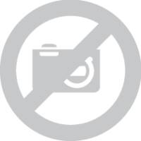 Axiális ventilátor 230 V/AC 36 m³/h 80 x 80 x 38 mm X-Fan RAH8038S1 (RAH8038S1) X-Fan