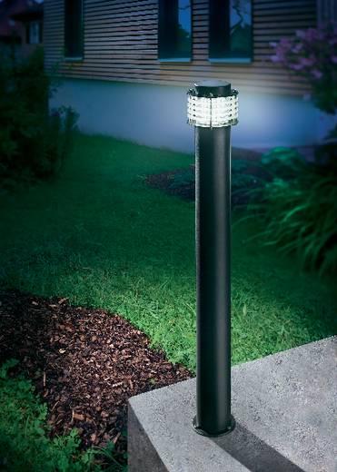 Kültéri álló LED-es lámpatest, 4,8 W (fehér), 230 V, IP54, fekete, Esotec Florenz 201123