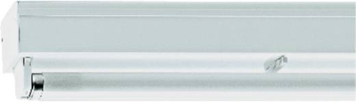 Fénycsík, 1235 mm x 52 mm x 88 mm, 230 V/50 Hz, G13 ,1 x 36 W, fehér, Regiolux ILF T8 10601361100
