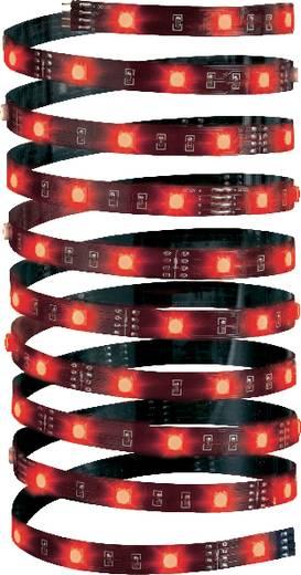 Dekorációs LED fénycsík, fekete, RGB LED, 5m, YourLED ECO Paulmann 70253