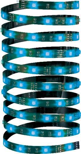 RGB LED szalag csatlakozóval 12 V, 500 cm, Paulmann YourLED Eco 70253