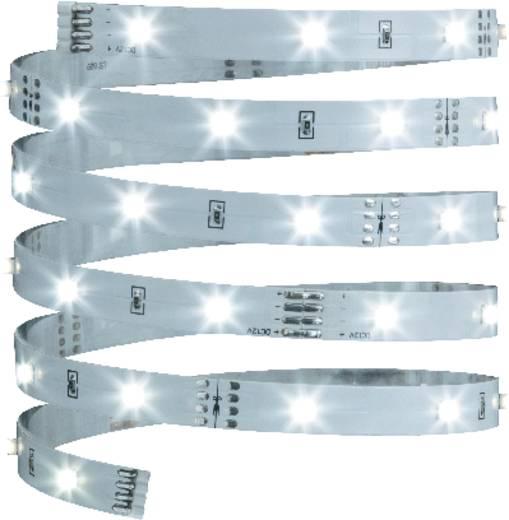 LED szalag, 3 m, hidegfehér, Paulmann YourLED Eco Stripe 70256