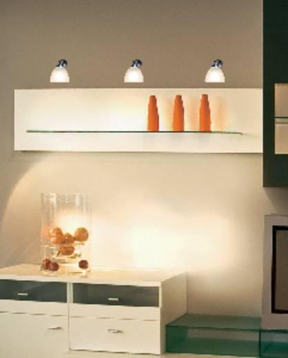 Bútormegvilágító lámpa, tükörlámpa, halogén, fehér, G4, 20 W, Basetech