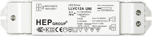 LED meghajtó: 350 mA, 12 WLLVC 12 A UNI Fehér