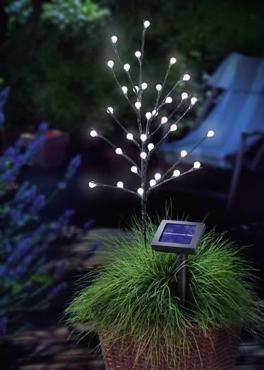 LED-es leszúrható napelemes kerti lámpa, virág forma, fehér, 0,6 W, Esotec 102105