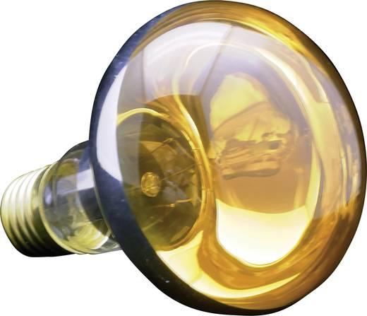 Reflektoros izzó, R80, E27, 60 W, narancs
