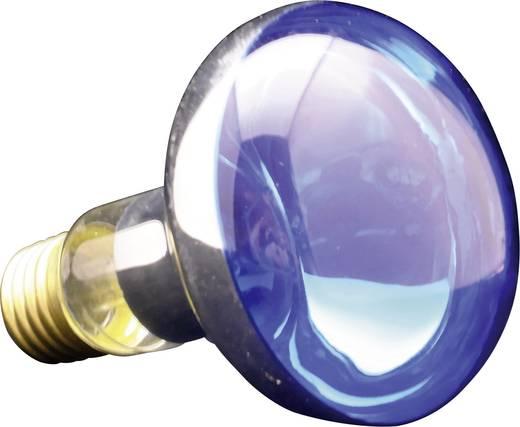 Reflektoros izzó, R80, E27, 60 W, kék, 6070.77