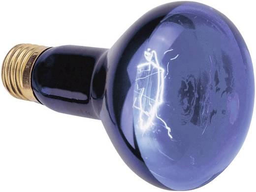 Feketefény-, UV reflektor fényforrás, 89510005 75W E27