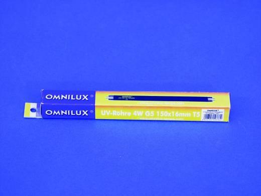 Feketefény-, UV fénycső, 4W G5 T5 5000h 150x16mm, OMNILUX 895009054 WG5