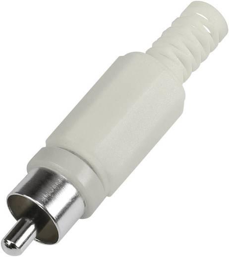 RCA csatlakozó dugó, egyenes pólusszám: 2 fehér 1 db