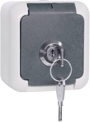 Falra szerelhető dugalj IP44 Szürke 101 787