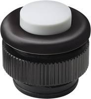 Grothe 61031 Csengőgomb 1 részes Fekete, Fehér 24 V/1,5 A Grothe
