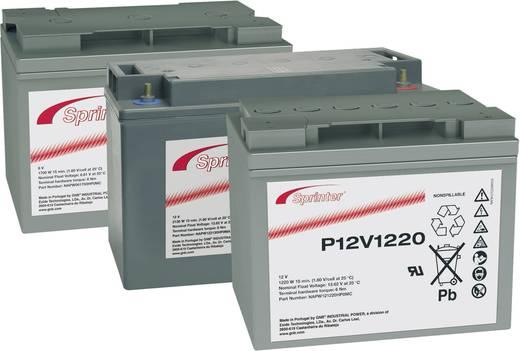 Ólomakku 12 V 41 Ah GNB Sprinter P12V875 NAPW120875HP0MC Ólom-vlies (AGM) 200 x 176 x 169 mm Karbantartásmentes