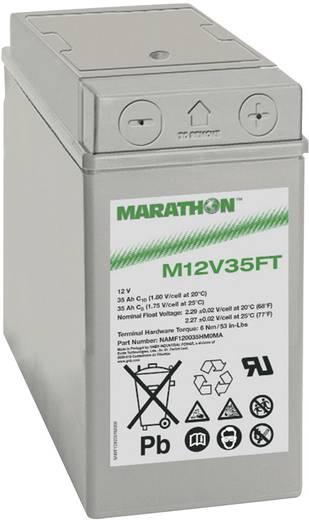 Ólomakku 12 V 35 Ah GNB Marathon M 12 V 35 FT NAMF120035HM0MA Ólom-vlies (AGM) 107 x 189 x 280 mm Karbantartásmentes