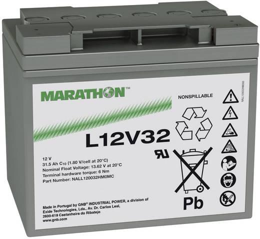 Ólomakku 12 V 31.5 Ah GNB Marathon L12V32 NALL120032HM0MC Ólom-vlies (AGM) 198 x 175 x 168 mm Karbantartásmentes
