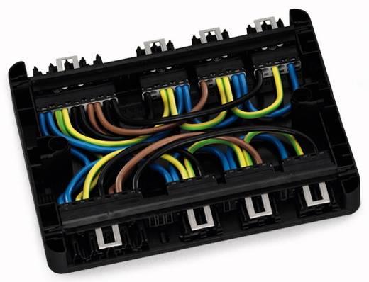 Hálózati elosztó doboz, fekete, WAGO 899-631/111-000