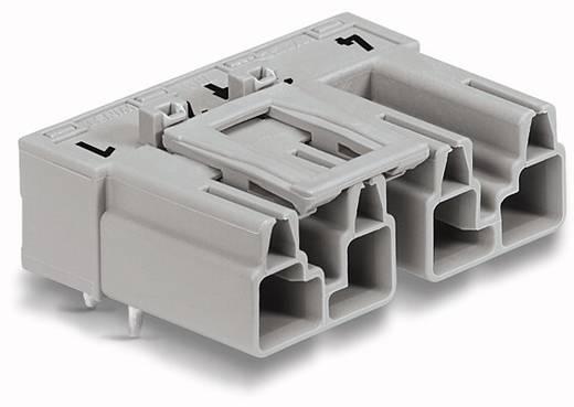 Hálózati csatlakozó dugó, beépíthető, vízszintes, 25 A, pólusszám: 4, szürke, 50 db, WAGO 770-854/011-000/064-000