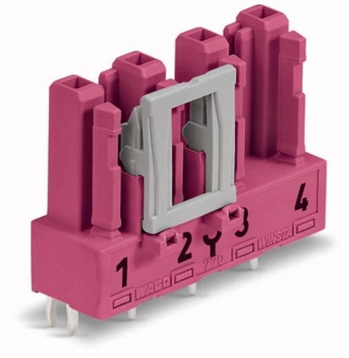 Hálózati csatlakozó alj, beépíthető, függőleges, 25 A, pólusszám: 4, pink, 50 db, WAGO 770-884/081-000