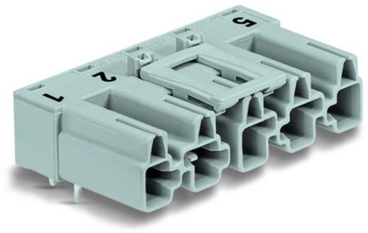 Hálózati csatlakozó dugó, beépíthető, vízszintes, 25 A, pólusszám: 5, szürke, 50 db, WAGO 770-855/011-000/060-000