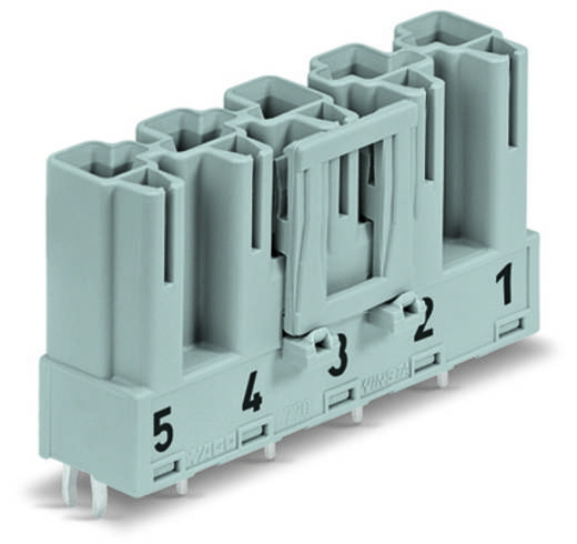 Hálózati csatlakozó dugó, beépíthető, függőleges, 25 A, pólusszám: 5, szürke, 50 db, WAGO 770-855