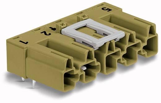 Hálózati csatlakozó dugó, beépíthető, vízszintes, 25 A, pólusszám: 5, világoszöld, 50 db, WAGO 770-875/011-000/073-000