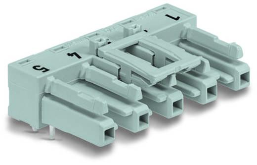 Hálózati csatlakozó alj, beépíthető, vízszintes, pólusszám: 5, 25 A, kék, WAGO 770-3105/011-000, 50 db