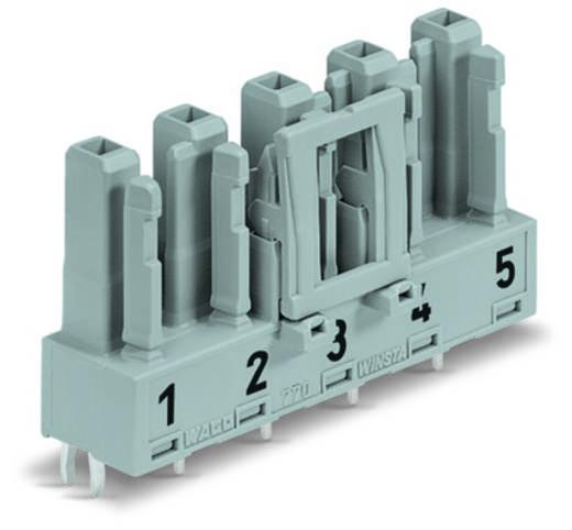 Hálózati csatlakozó alj, beépíthető, függőleges, pólusszám: 5, 25 A, fehér, WAGO 770-825, 50 db