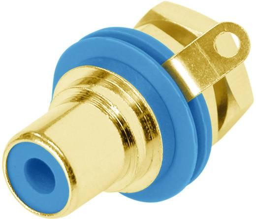 RCA csatlakozó alj, beépíthető, függőleges pólusszám: 2 kék Rean AV NYS367-6-CON 1 db