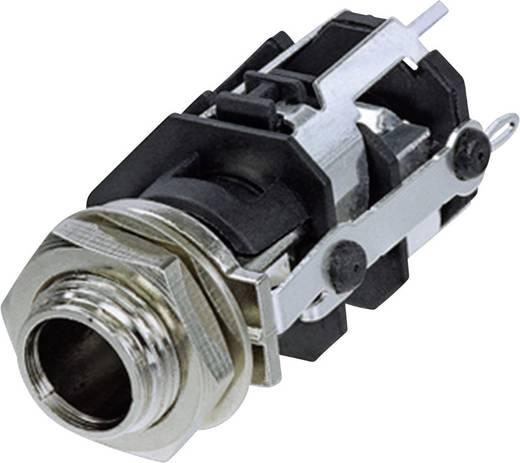 Jack csatlakozó, 6,35 mm alj, beépíthető, függőleges pólusszám: 3 Sztereo fekete Rean AV RJ5VM 1 db