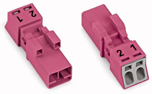 Hálózati csatlakozó dugó, egyenes, 16 A, pólusszám: 2, pink, 50 db, WAGO 890-292