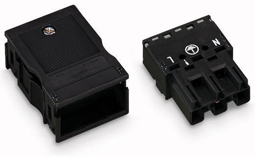 Hálózati csatlakozó dugó, egyenes, 25 A, pólusszám: 3, fekete, 25 db, WAGO 770-113