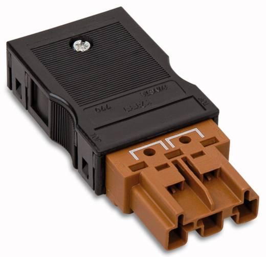 Hálózati csatlakozó dugó, egyenes, 25 A, pólusszám: 3, barna, 25 db, WAGO 770-1373/146-000
