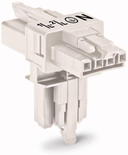 Hálózati T elosztó, 1 x dugó – 2 x alj, pólusszám: 4, fehér, WAGO 890-677, 25 db