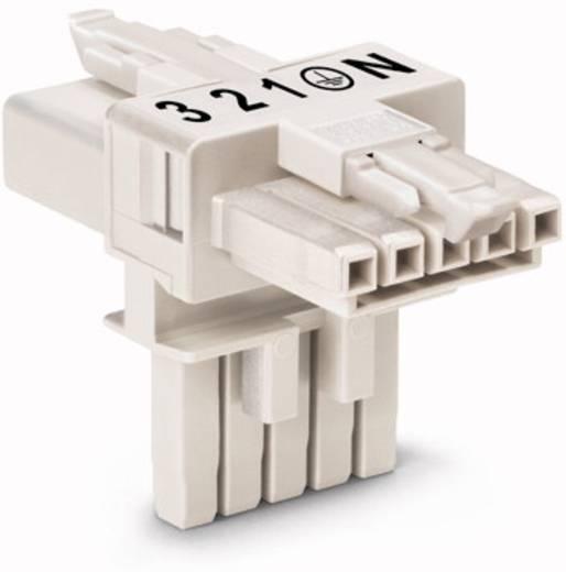 Hálózati T elosztó, 1 x dugó – 2 x alj, pólusszám: 5, fehér, WAGO 890-671, 25 db