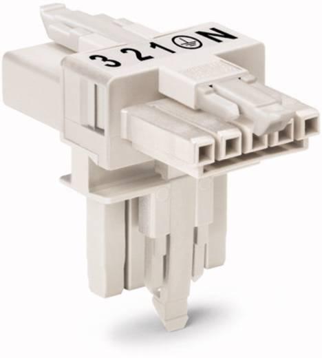 Hálózati T elosztó, 1 x dugó – 2 x alj, pólusszám: 5, fehér, WAGO 890-672, 25 db
